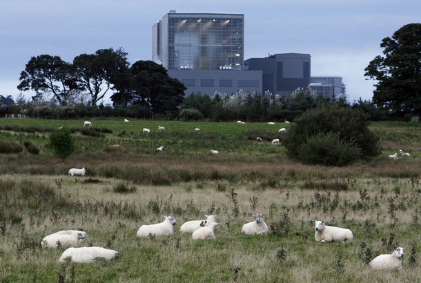 Sheep graze in fields next to British Energy Hunterston 'B' nuclear power station in west Scotland